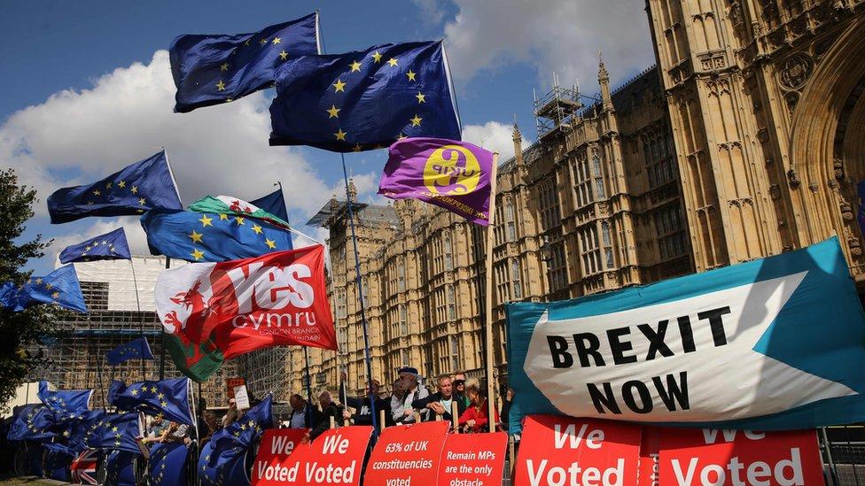 英國議會大廈前的抗議人士