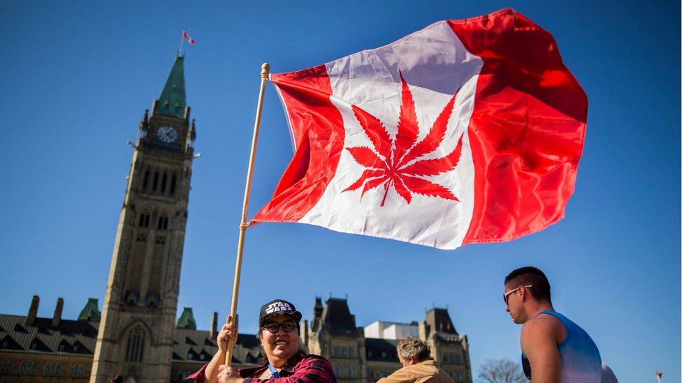 Canadian flying a national flag with a marijuana leaf instead of a maple leaf