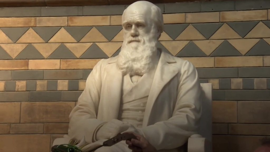 Natural History Museum: 'Breathing new life' into Darwin