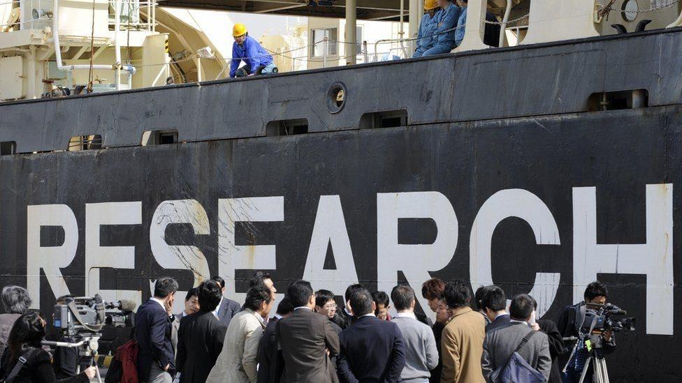 Корабель для вилову китів