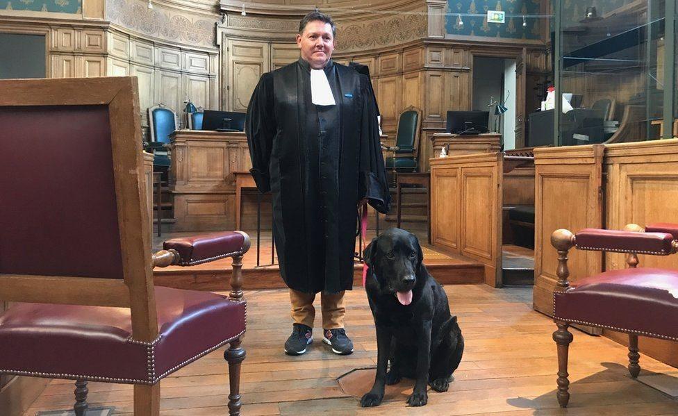 رجل قانون رفقة الكلب لول