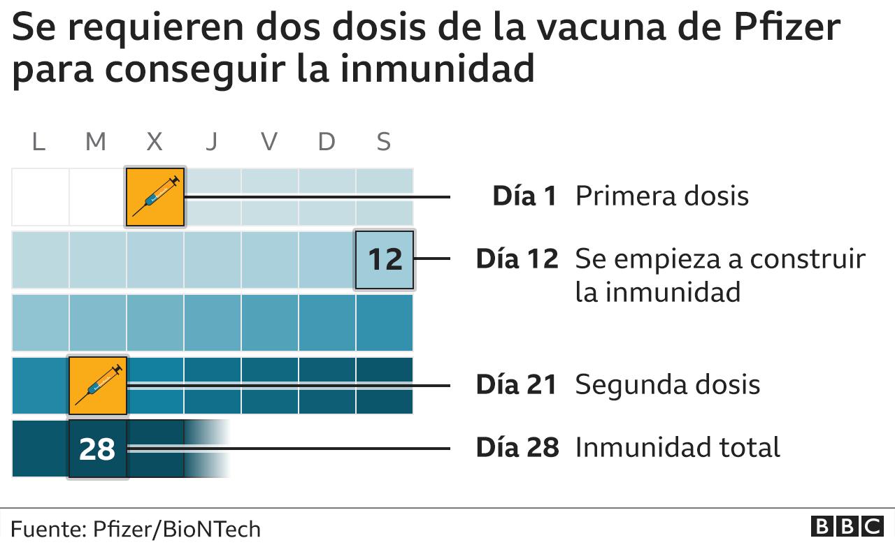 Cuánto demora en construirse la inmunidad tras vacunarse con el compuesto de Pfizer y BioNTech