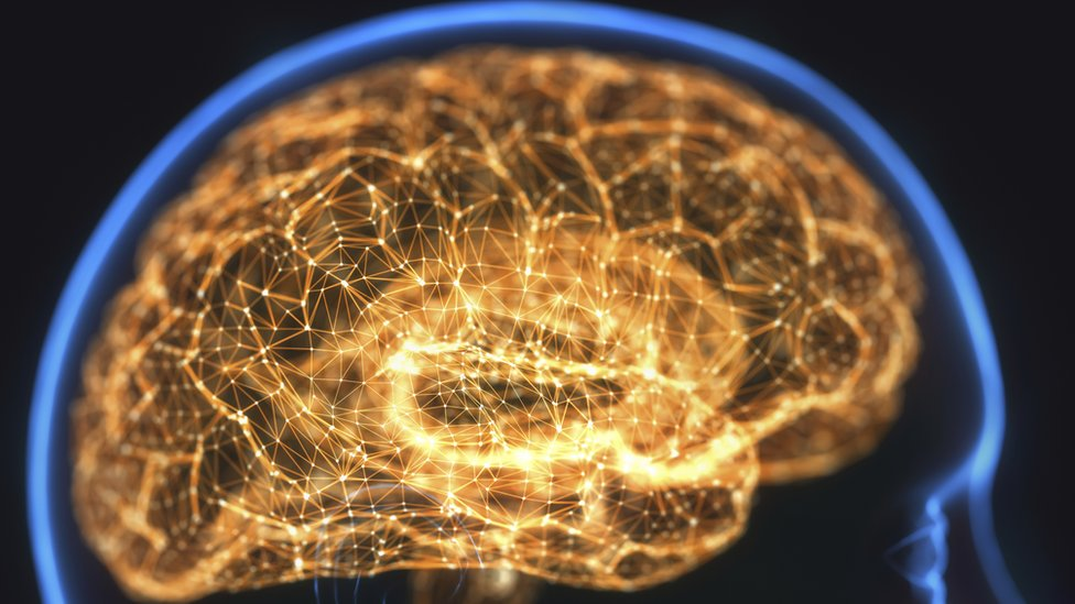 Ilustração mostra cérebro destacado com várias redes e linhas iluminadas