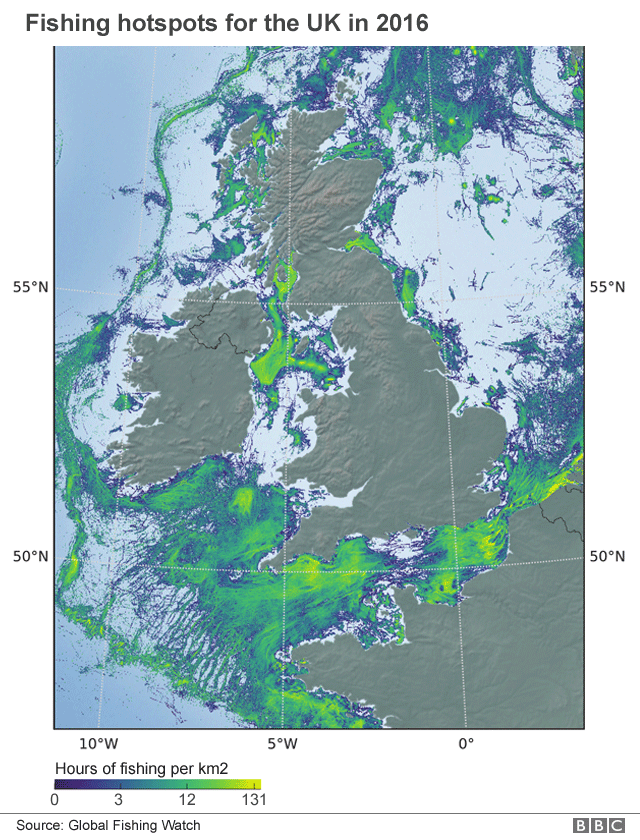World S Fishing Fleets Mapped From Orbit Bbc News
