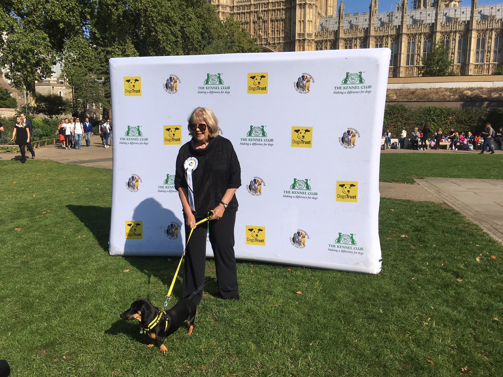 Former Conservative minister Cheryl Gillan with rescue dog Gooseberry