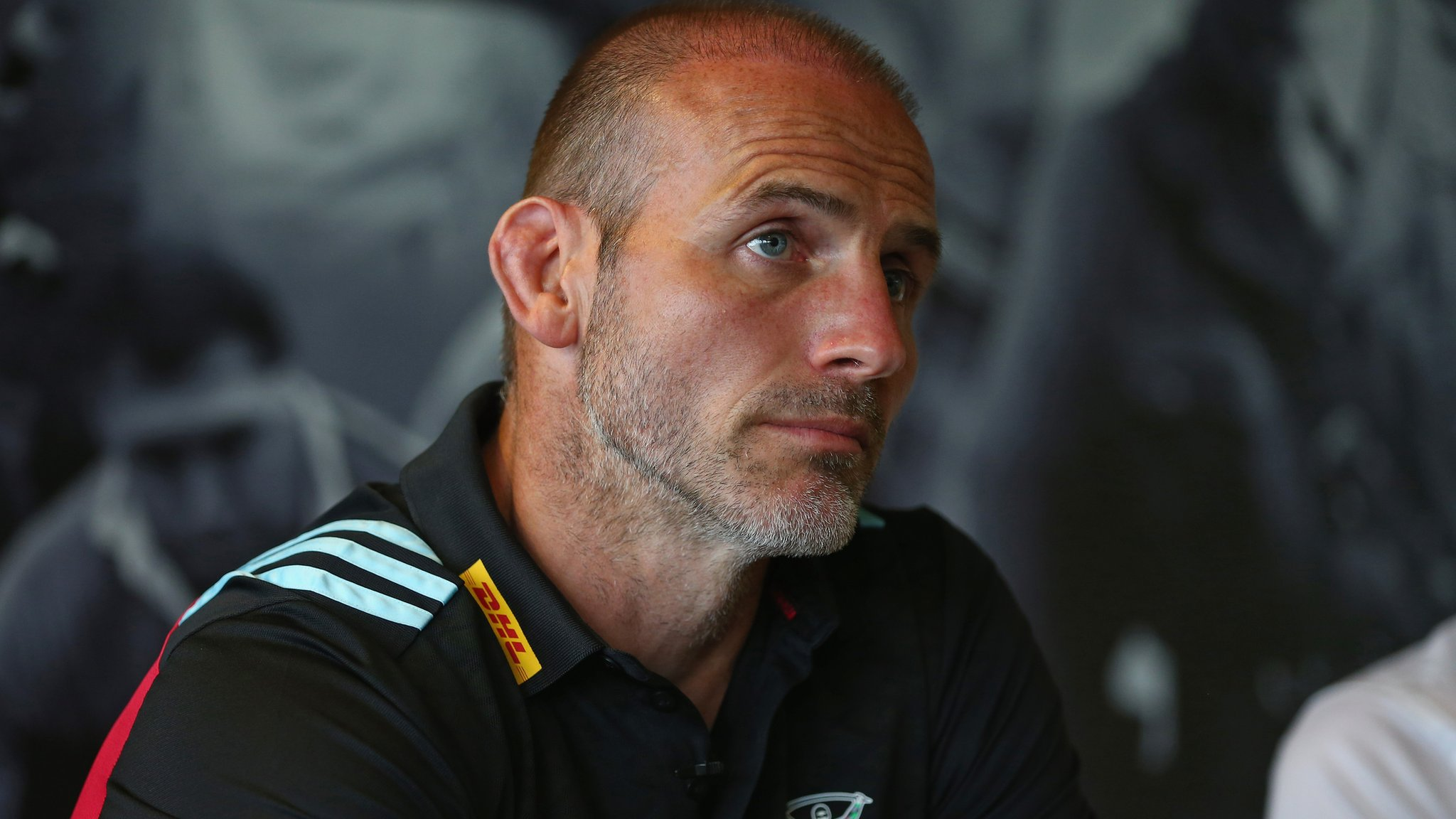 Quins job is unbelievable opportunity - Gustard