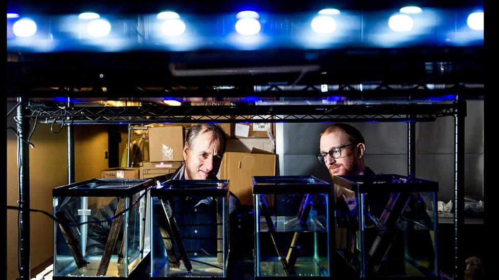 Dan Distel y Reuben Shipway en el Centro de Ciencias Marinas de la Universidad Northwestern