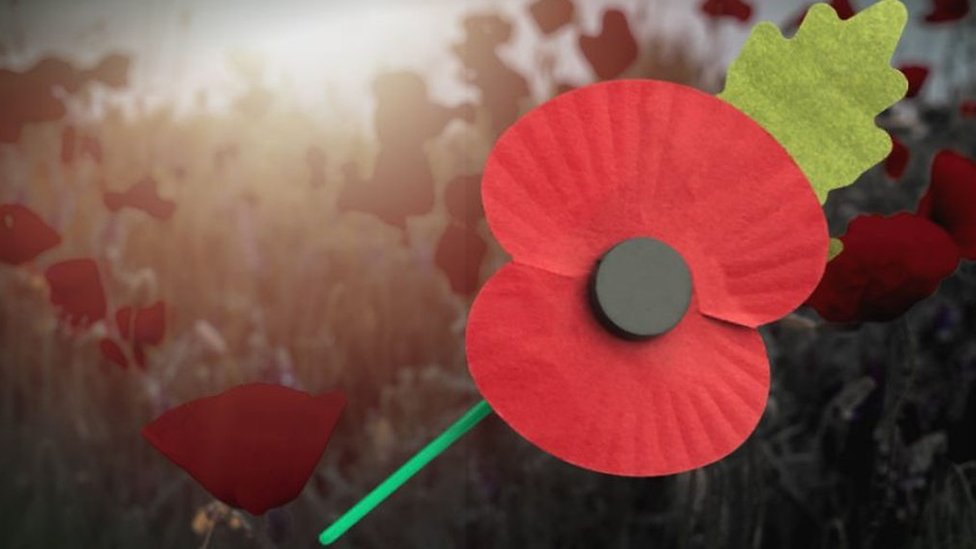 Remembrance Day: Why some people choose not to wear poppies