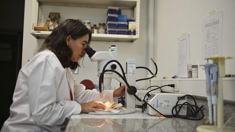 doktorka gleda kroz mikroskop