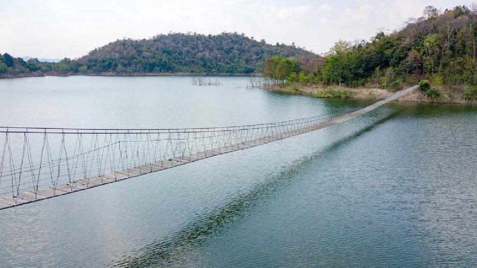 Puente en el parque nacional