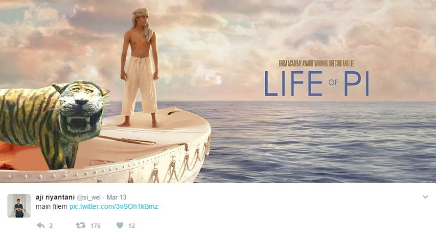 Fake poster for Life of Pi