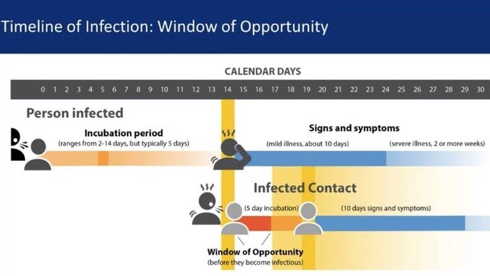 Coronavirus Contact Tracing My New Skill Bbc News