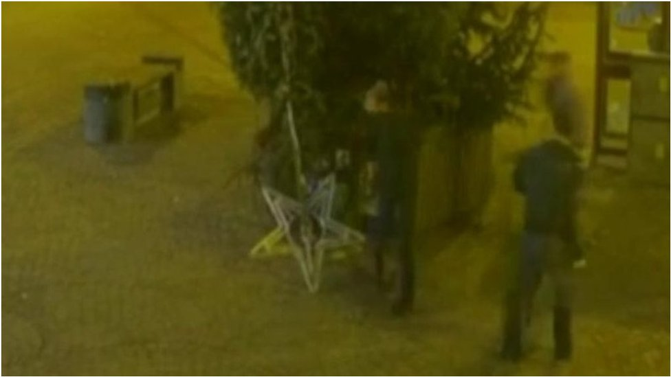 Keswick Christmas tree vandals hunted by police