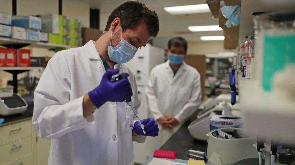 laboratório analisa teste