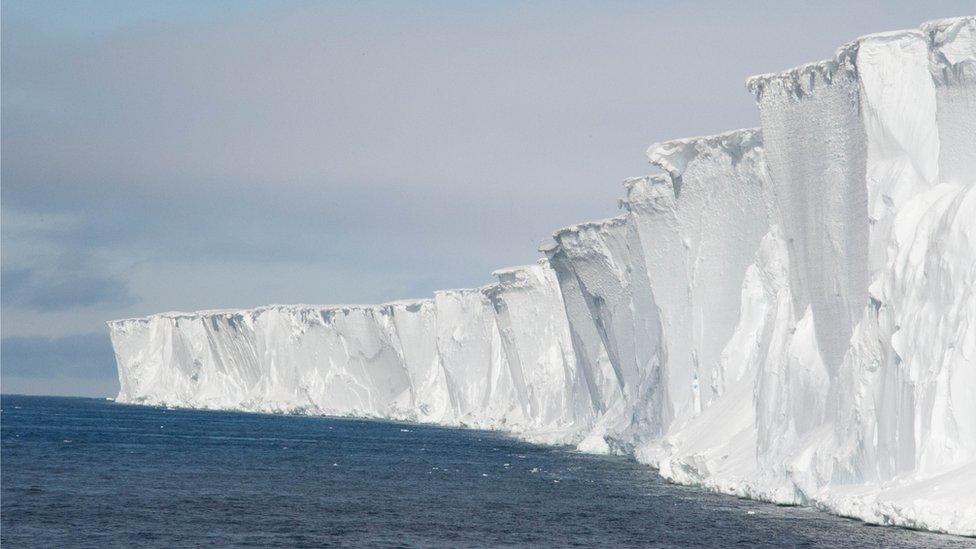 plataformas de hielo.