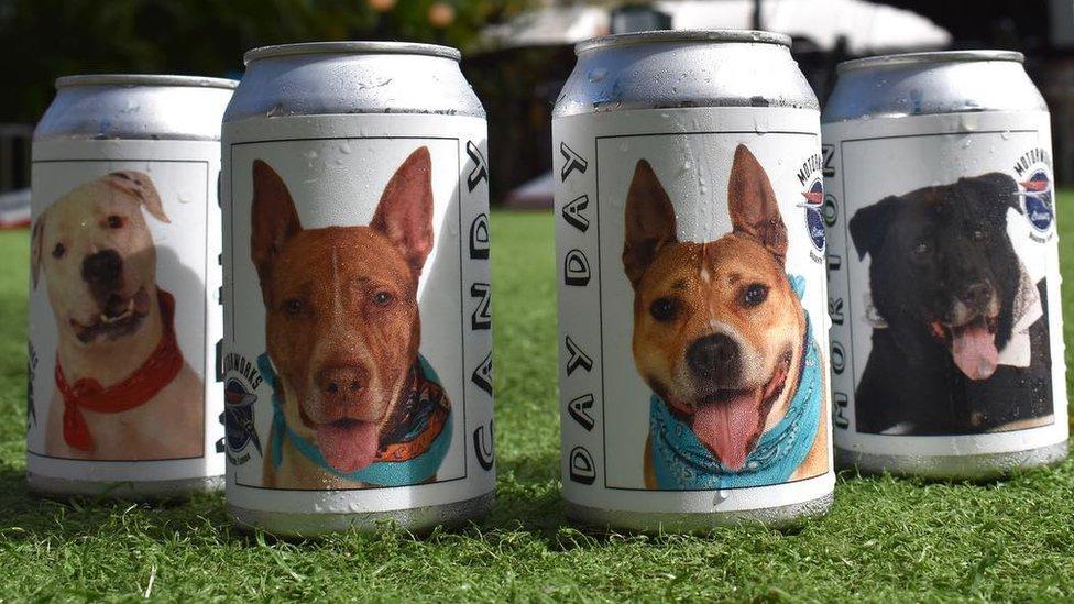 Latas de cerveza con fotos de perros