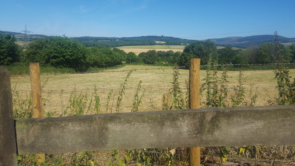 View from Michaelston-y-Fedw
