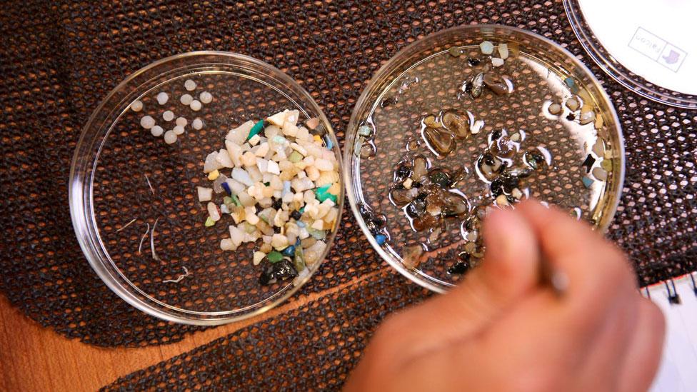Una de los análisis a bordo concluyó que en el kilómetro cuadrado de donde se obtuvo una muestra había más de 500.000 microplásticos.