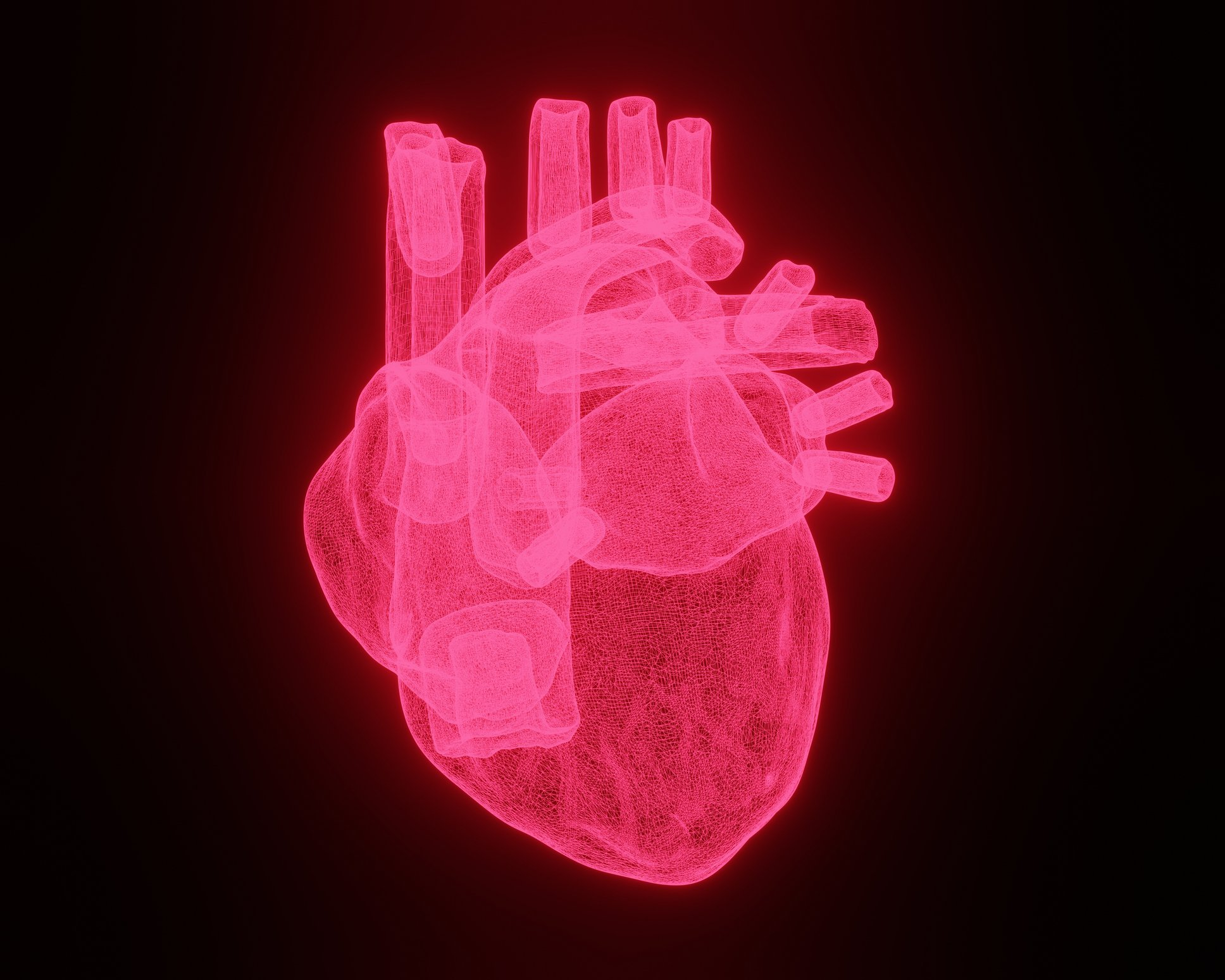 Una ilustración 3d del corazón humano.