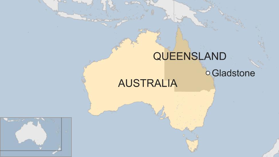 Estas especies de marsupiales viven en la provincia de Queensland, cerca de la localidad de Glandstone.
