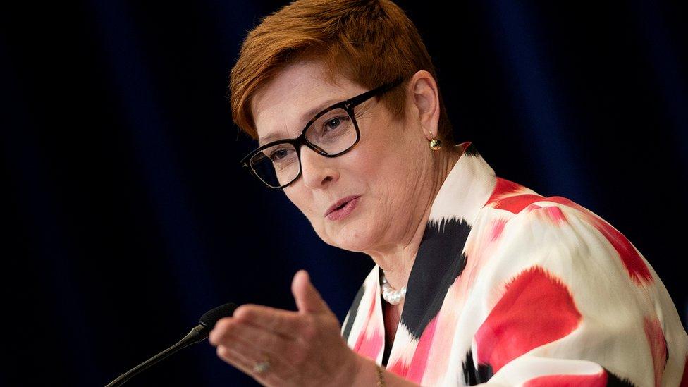 澳大利亞外長佩恩