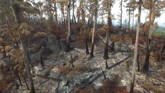 Tasmania fire damage