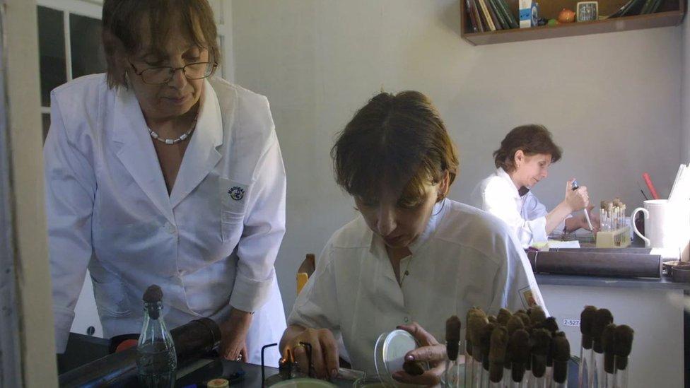 Investigadoras mujeres en un laboratorio.