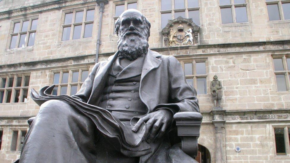 """Charles Darwin, naturista inglés y autor de """"El origen de las especies"""" y """"El origen del hombre""""."""