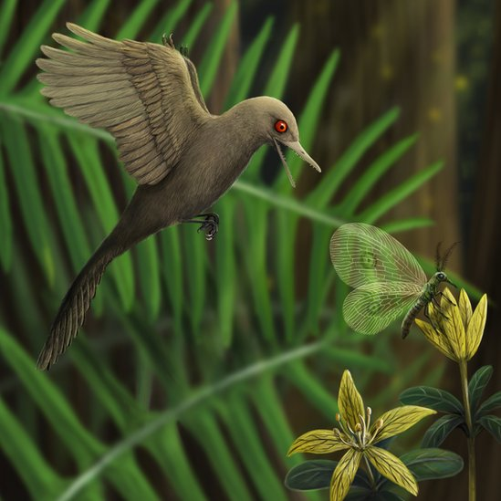 Una ilustración del Oculudentavis khaungraae
