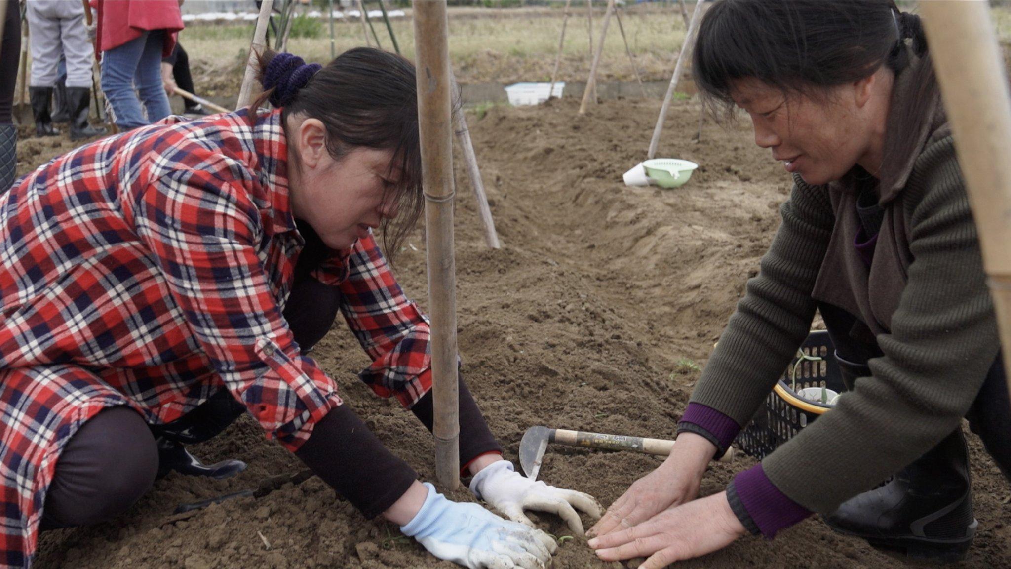Penampungan ini punya sepetak lahan tempat penghuninya bisa bercocok tanam sayur mayur.