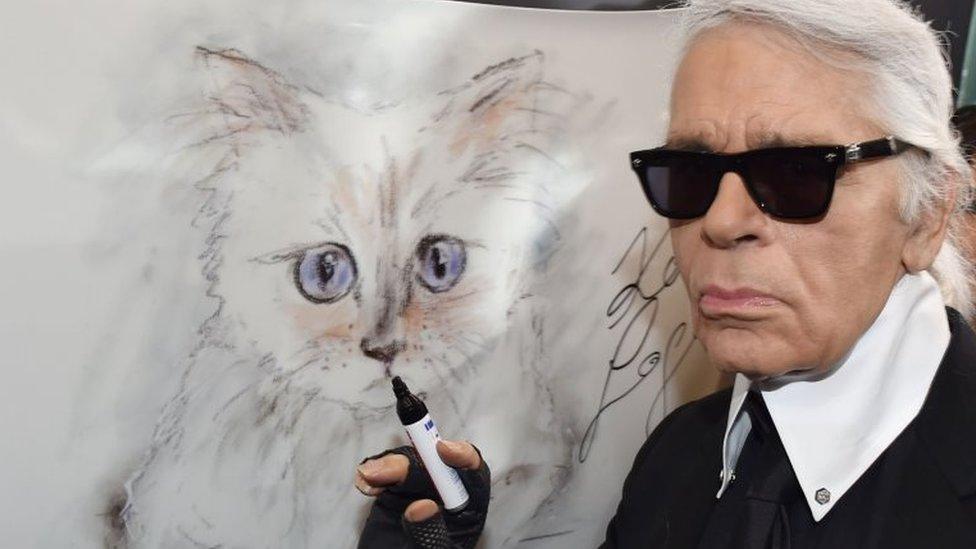 صورة لـ كارل لاغرفيلد مع لوحة تحمل صورة قطته