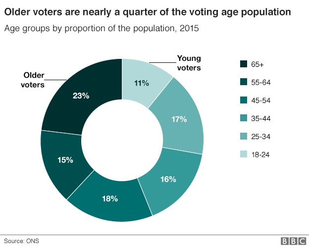 Older votes are nearly a quarter of the voting age population