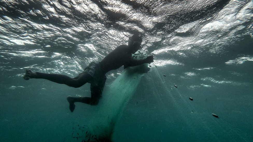 Fisherman tends to his net in the sea.