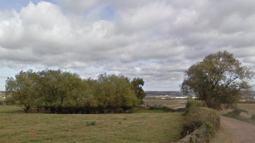 Fields on Hollinghirst Lane
