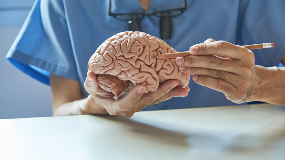 Hombre señala un cerebro