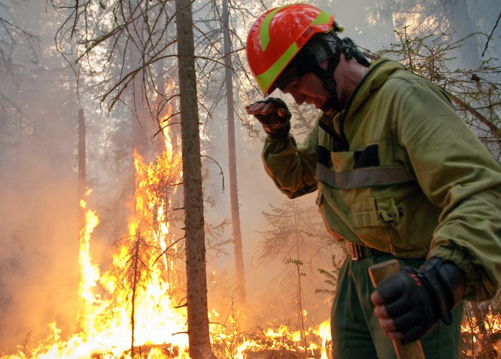A Russian serviceman tackles wildfires in Krasnoyarsk region, Russia. Photo: 1 August 2019