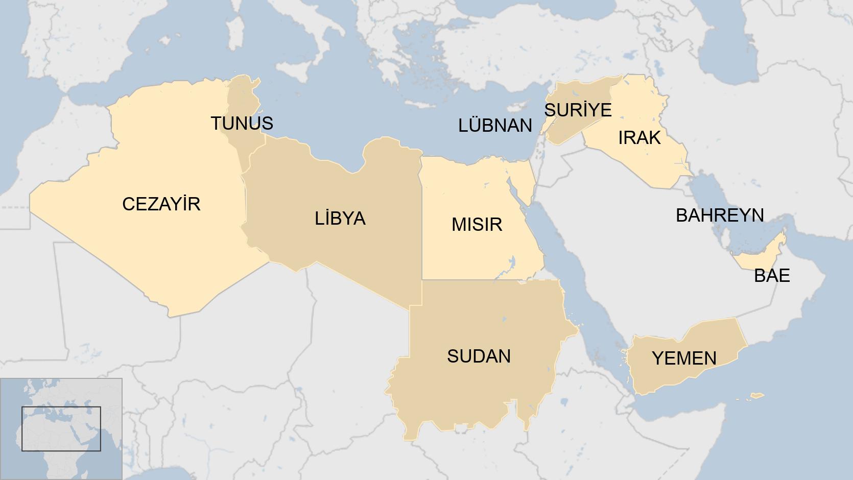 Arap Baharı ülkeleri
