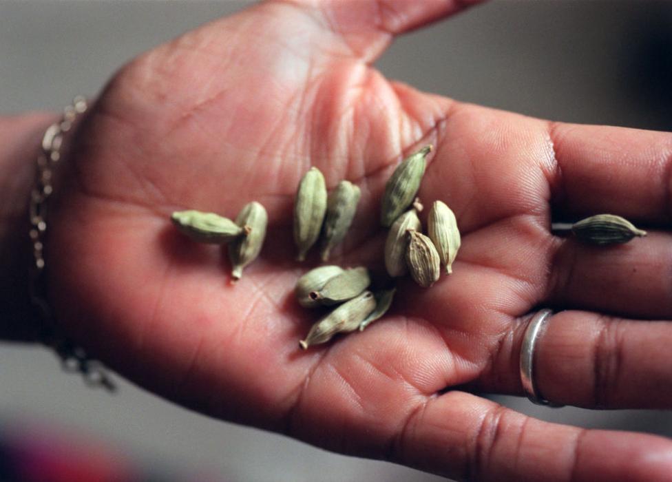 A Somali cook holding cardamom seeds